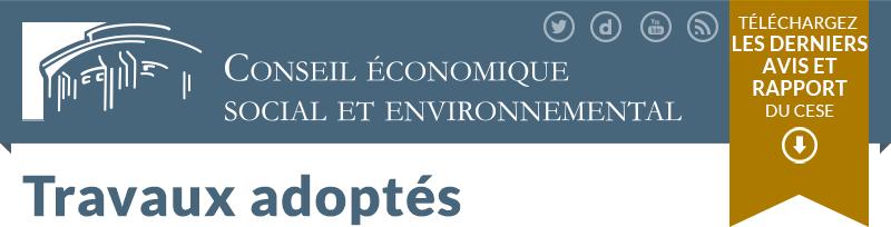 Service civique : le Conseil Economique et Social tire un bilan mesuré Header_rapport_v2