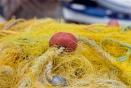 Retours sur la réforme de la Politique commune des pêches (PCP)