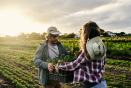 Agriculture : l'enjeu de la (re)territorialisation de l'alimentation