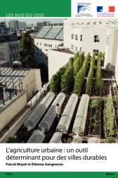 L'agriculture urbaine : un outil déterminant pour des villes durables