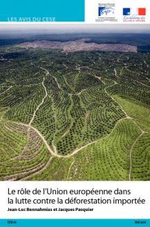Le rôle de l'Union européenne dans la lutte contre la déforestation importée