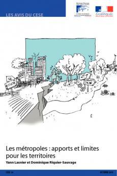 Les métropoles : apports et limites pour les territoires