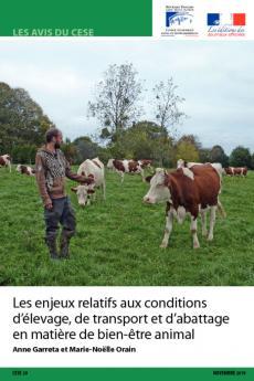 Les enjeux relatifs aux conditions d'élevage, de transport et d'abattage en matière de bien-être animal (BEA)