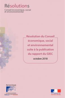 Résolution du Conseil économique, social et environnemental suite à la publication du rapport du GIEC