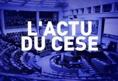 Emission d'Acteurs publics tv consacrée à l'actualité du CESE