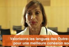 """Le CESE a adopté son avis """"Valorisons les langues des Outre-mer pour une meilleure cohésion sociale"""""""