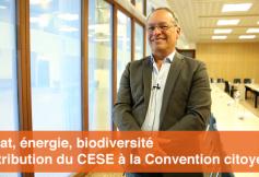 """Le CESE a adopté son avis """"Climat, énergie, biodiversité"""""""