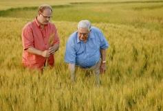 Agriculture familiale : soutien et accompagement
