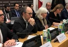 Le projet de réforme du CESE au cœur des échanges des membres de la Commission des lois de l'Assemblée nationale