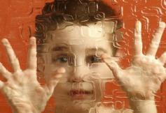 Le CESE se prononcera sur le coût économique et social de l'autisme