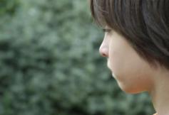 Le CESE se mobilise sur l'autisme, grande cause nationale 2012