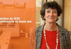 """Le CESE a adopté sa résolution """"La biodiversité en haute mer"""""""