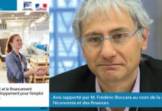 """Le CESE a rendu son avis sur """"les PME/TPE et le financement de leur développement pour l'emploi et l'efficacité"""""""
