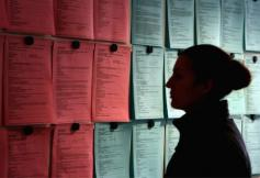 Chômage de longue durée et possibilité d'expérimentation territoriale