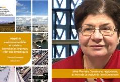 Le CESE a rendu ses préconisations sur les inégalités environnementales et sociales