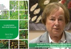 Vote de l'avis sur la valorisation de la forêt française