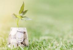 Le CESE se saisit du sujet de la fiscalité écologique