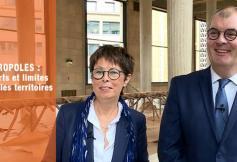 """Le CESE a adopté son avis """"Les métropoles : apports et limites pour les territoires"""""""