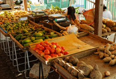 Pouvoir d'achat : une préoccupation forte des Outre-mer
