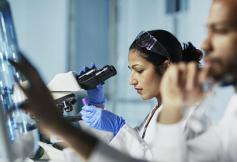 Le CESE prépare sa contribution au projet de loi de programmation pluriannuelle de la recherche