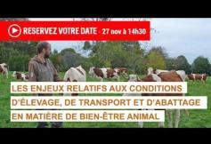 """Présentation du projet d'avis """"Les enjeux relatifs aux conditions d'élevage, de transport et d'abattage en matière de bien-être animal (BEA)"""""""