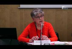 Audition de Gabrielle CLOTUCHE (IPSE) - Europe dotée d'un socle des droits sociaux