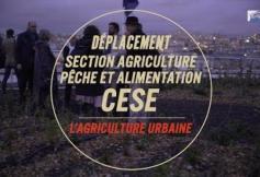 L'agriculture urbaine dans la Ville de Paris
