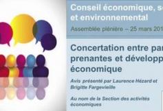 Revoir la séance du 25 mars 2014 : Concertation entre parties prenantes et développement économique