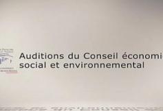 Questions à Corinne Lepage