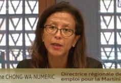 Questions à Mme Chong Wa Numeric, auditionnée par la délégation à l'Outre-mer