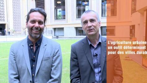"""Le CESE a adopté son avis  """"L'agriculture urbaine: un outil déterminant pour des villes durables"""""""