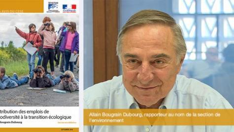 Contribution des emplois de la biodiversité à la transition écologique : le CESE a rendu son avis