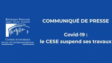 Covid-19 : le CESE suspend ses travaux