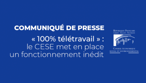 «100% télétravail»: le CESE met en place un fonctionnement inédit pour une assemblée