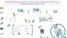 Fermes aquacoles marines et continentales : enjeux et conditions d'un développement durable réussi