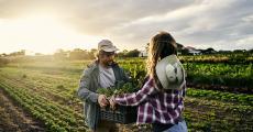 Pour une alimentation durable ancrée dans les territoires