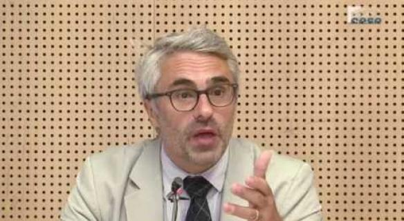 Audition de Pascal SAINT-AMANS (OCDE) - Evitement fiscal