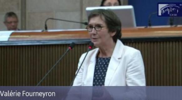 Intervention de Mme Valérie Fourneyron
